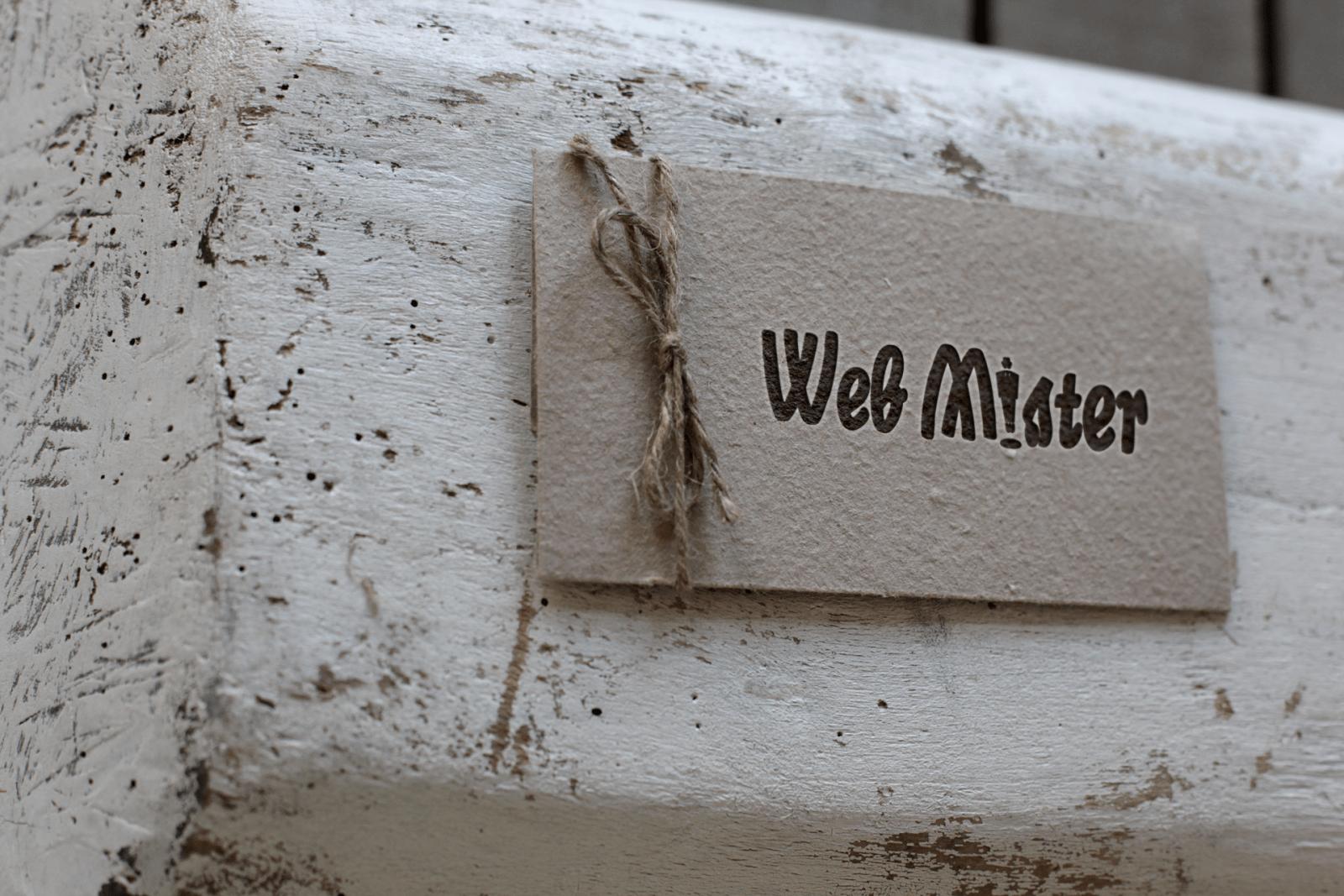 05_webmister